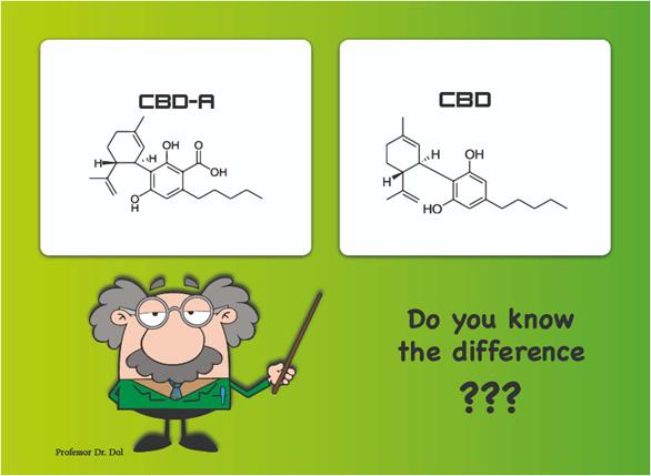 3 Key Differences between CBDA and CBD