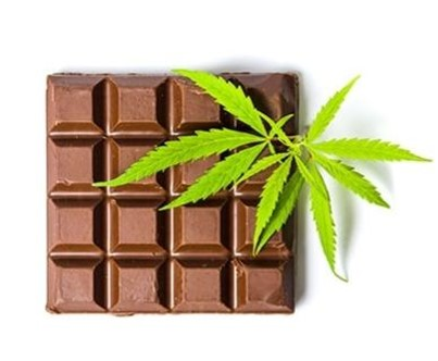Cannabis Weed Chocolate is Ridiculously Easy to Make