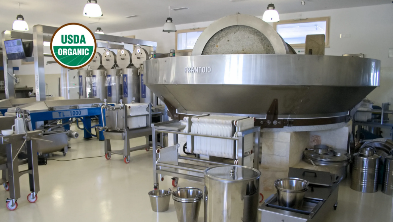 Cold Pressed Oil Extraction Equipment