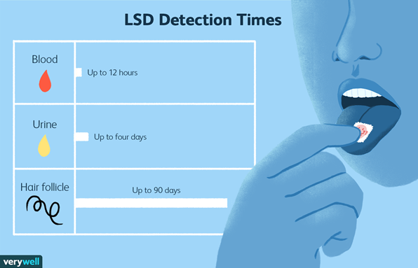 How Long Do the Effects of LSD Last in Your System