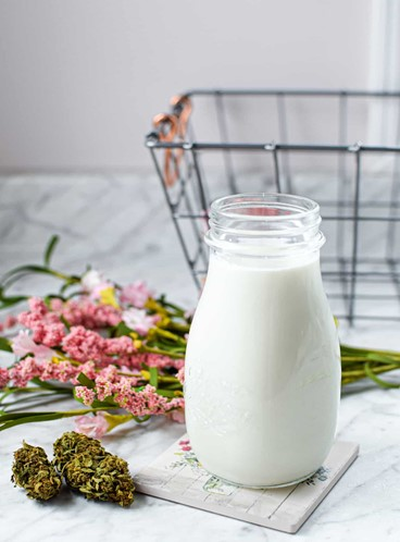 How is Weed Milk Beneficial to Us
